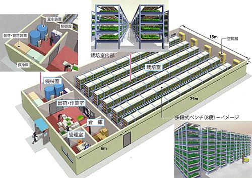 植物工場(人工光型植物生産システム-多段式)