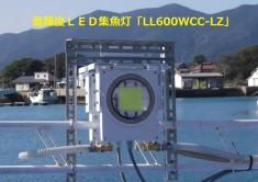 LL600WCC-LZ